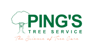 Ping's Tree Service Identity